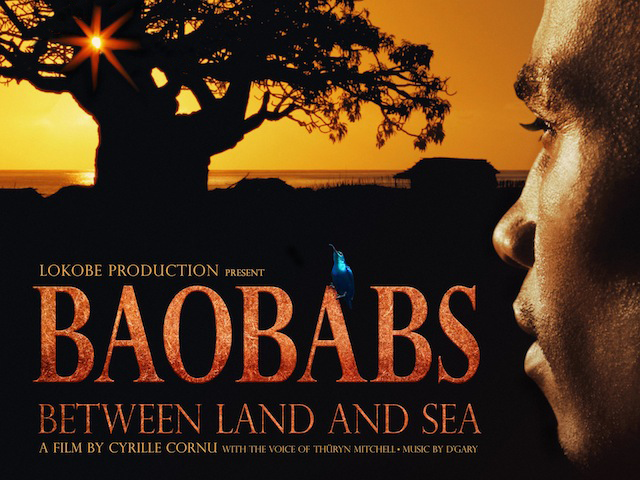 Baobabs between Land and Sea 640x480